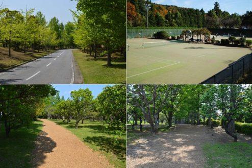13.リソル生命の森|テニスコート・フィンネンバーン