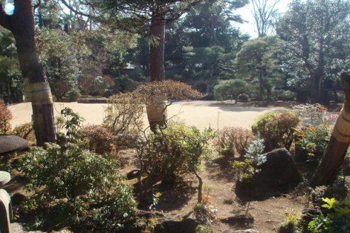 15.野田市市民会館|庭園
