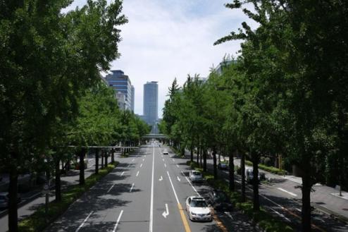 14.街・古道・橋・夜景・公園・竹林|愛知・東海・北陸