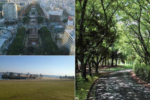 16.街・古道・橋・夜景・公園・竹林|愛知・東海・北陸