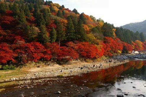 20.海・山・川・湖・滝・自然・ロケーション 人気スポット