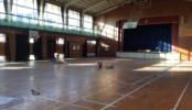 学校4|教室・体育館・校庭・職員室・屋上・グラウンド