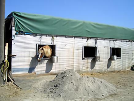 I日高市の牧場|牛舎外観