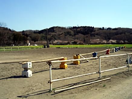 D日高市の牧場|放牧場