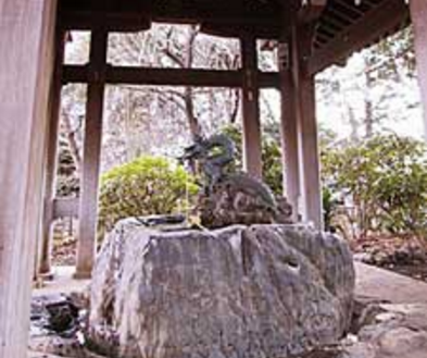 N神社|手水舎