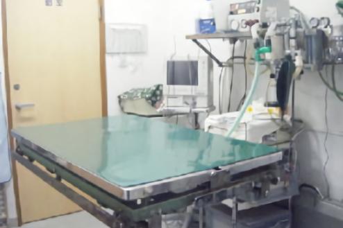 3.動物病院|処置室