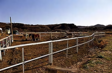 日高市の牧場|畜舎・放牧場・サイロ