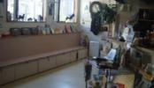 動物病院|診察室・処置室・待合室・受付