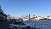 埠頭11|山下公園・氷川丸・マリンタワー