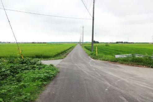 5.野田市の田園地帯|直線道路