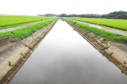 7.野田市の田園地帯|川