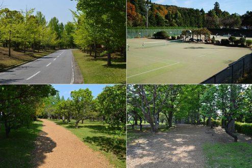 17.リソル生命の森|テニスコート・フィンネンバーン
