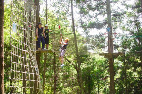 14.リソル生命の森|ターザニア・キャノピー