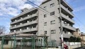府中マンション|洋室・和室・リビング・キッチン・屋上・外観・ハウススタジオ|東京