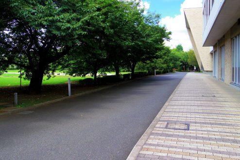 11.女子大新座キャンパス|屋外