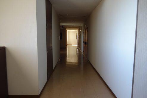 25.議場のある施設|廊下