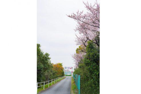 11.J-SOCIETY FOOTBALL PARK調布|ゲートへの通路