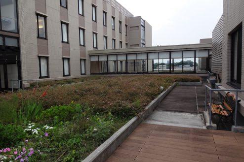 24.いろどりの国病院|屋上庭園