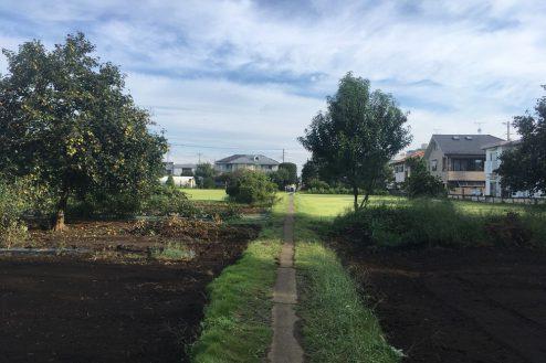9.芝生スペース・家庭菜園|畑スペース