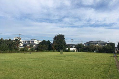 6.芝生スペース・家庭菜園|芝生スペース