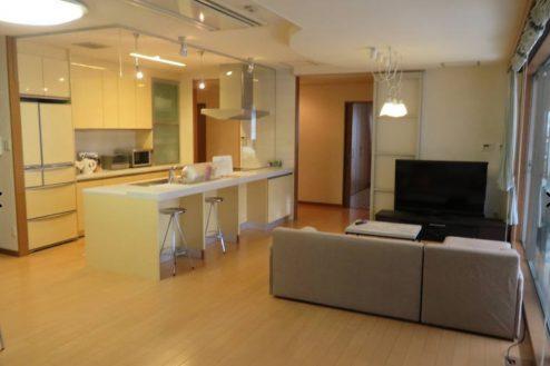 3.新宿2丁目マンションスタジオ|リビング・ダイニング・キッチン