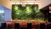 西麻布ダイニングレストラン(2046)|カフェ・小上がり・貸切り|東京