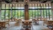 カフェARIAKE(3507)|レストラン・オープンテラス・貸切り|東京