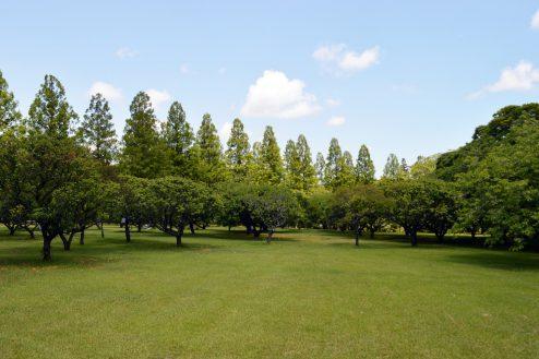 21.リソルの森|梅園